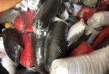 Xưởng cung cấp sỉ nón lưỡi trai, mũ tai bèo các loại